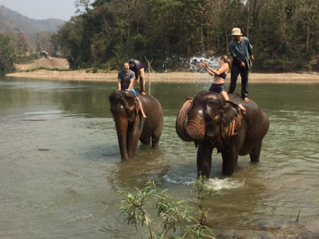 Mark Moses riding an elephant in Laos