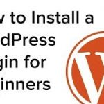 How to Set up a WordPress Plugin for Newcomers (Phase by Step Manual)